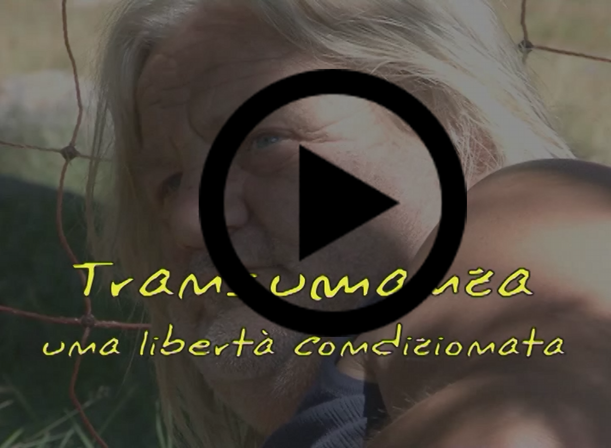 transumanza_play